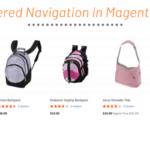 Magento 2 Layered Navigation Filter