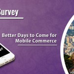 Brazil Survey: Better Days to Come for Mobile Commerce
