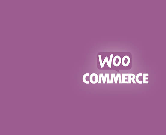 eCommerce Development Service Company In India & USA